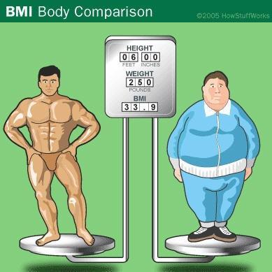 bmi spieren vet